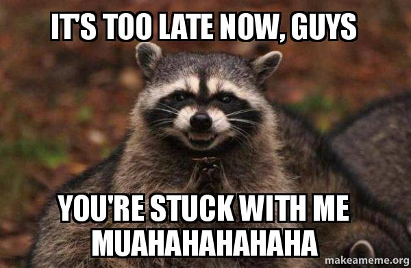 ... 'RE STUCK WITH ME MUAHAHAHAHAHA - Evil Plotting Raccoon | Make a Meme