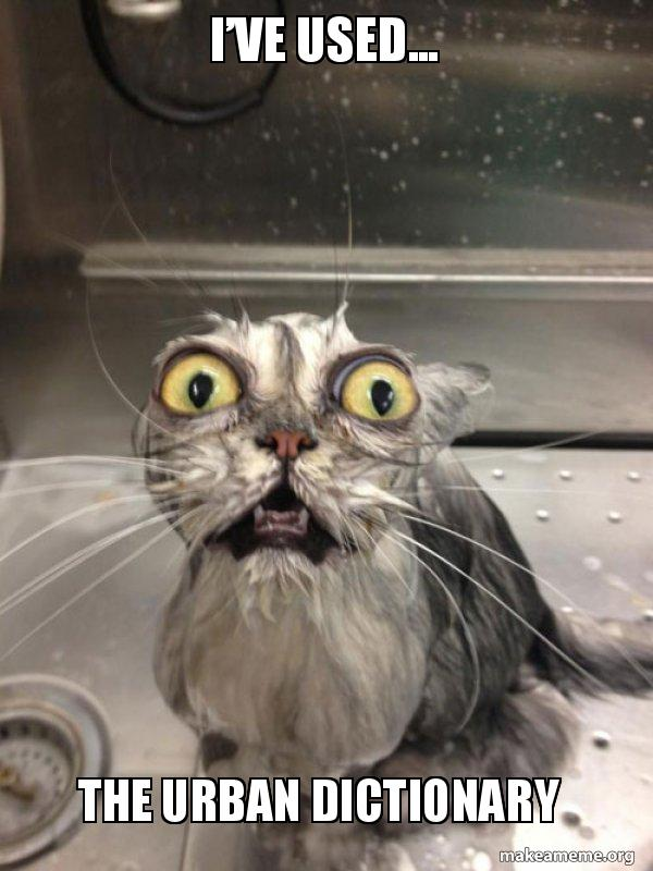 I've used    The urban dictionary - Cat bath | Make a Meme