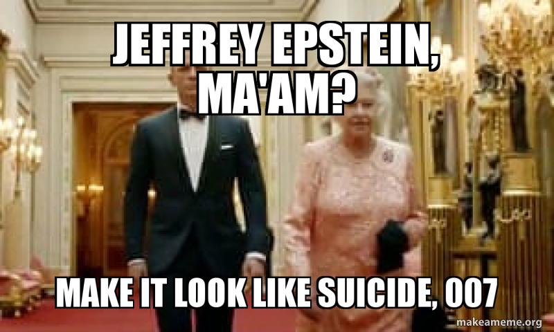 Image result for epstein meme