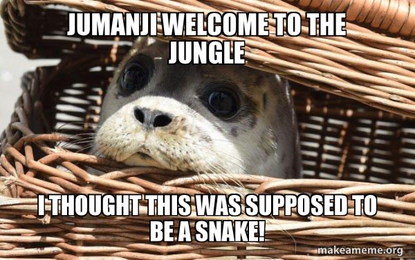Impending Doom Seal meme