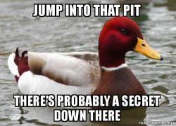 Malicious Advice Mallard meme