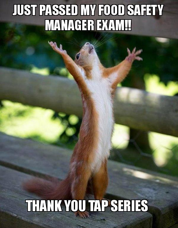 Happy Squirrel meme