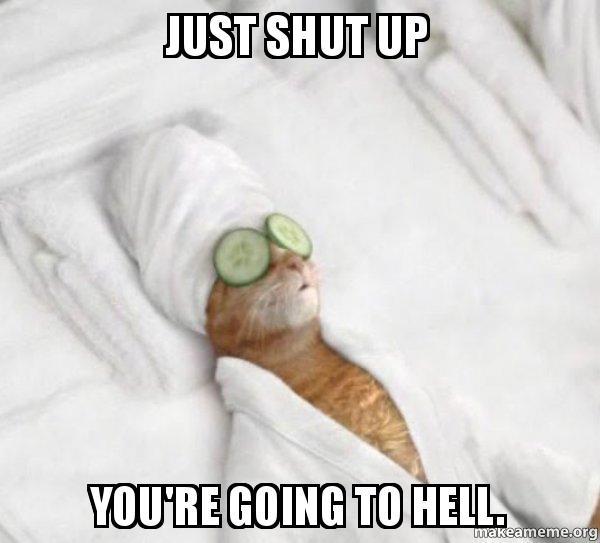 How To Make Cat Shut Up