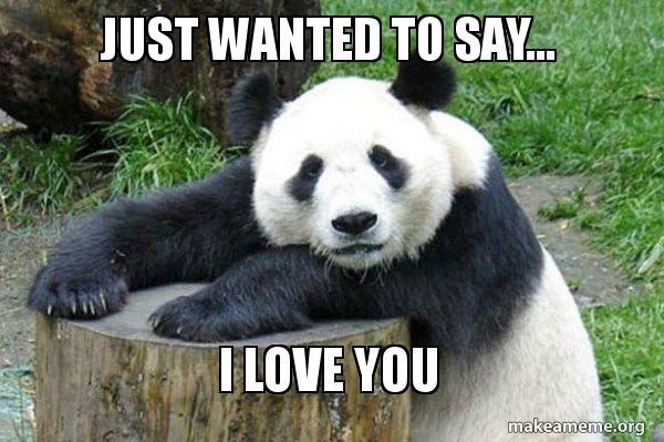 Just Wanted To Say I Love You Confession Panda Make A Meme