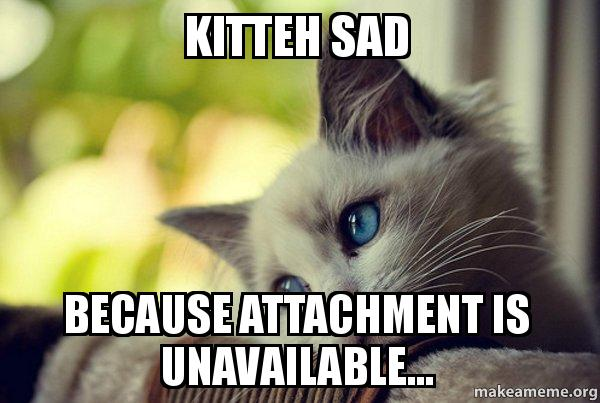 ... attachment is unavailable... - First World Cat Problems | Make a Meme