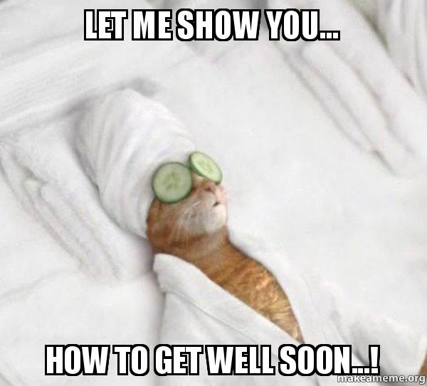 let me show iwusan let me show you how to get well soon ! pampered cat meme