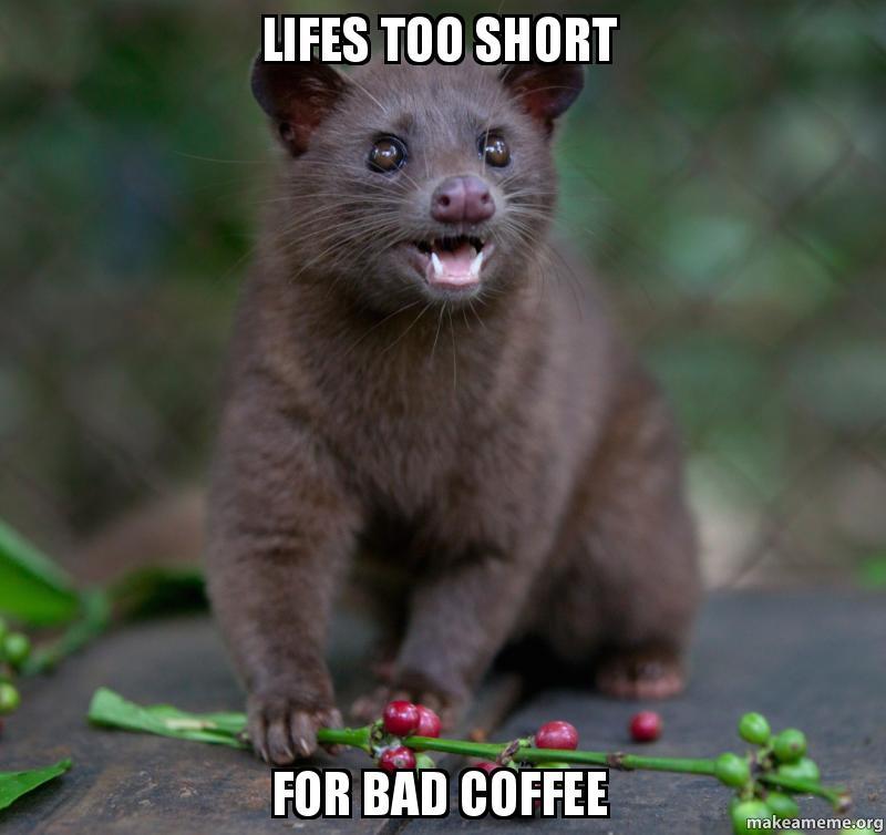 Lifes Too Short For Bad Coffee Shit Coffee Make A Meme