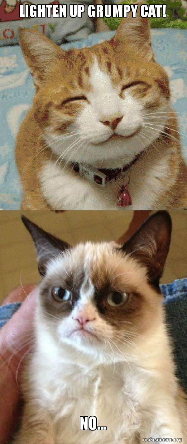 Lighten up grumpy cat! No... - Grumpy Cat vs Happy Cat | Make a Meme