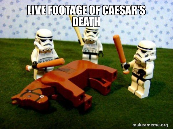 Flogging a Dead Horse meme