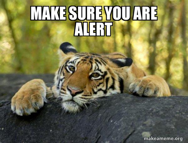 Confession Tiger meme