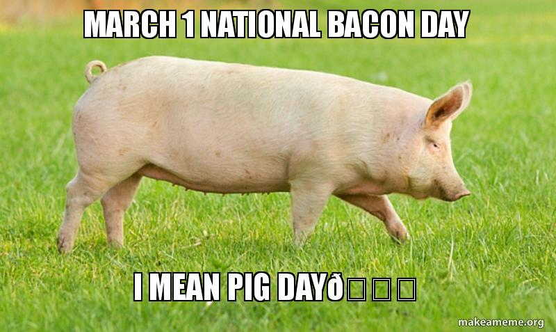 March 1 National Bacon day I mean Pig day😂 | Make a Meme