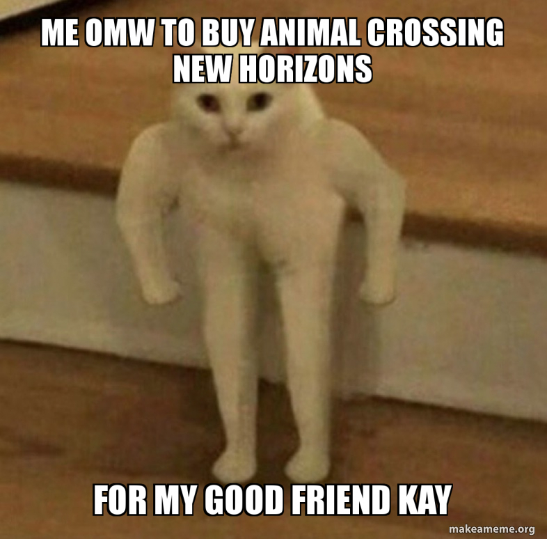 Me Omw To Buy Animal Crossing New Horizons For My Good Friend Kay