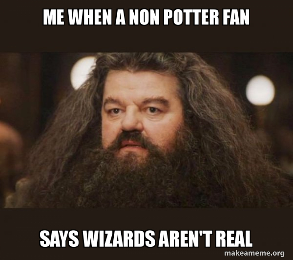 Hagrid - I should not have said that meme
