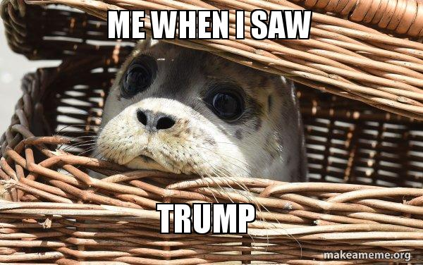 Impending Doom Seal meme