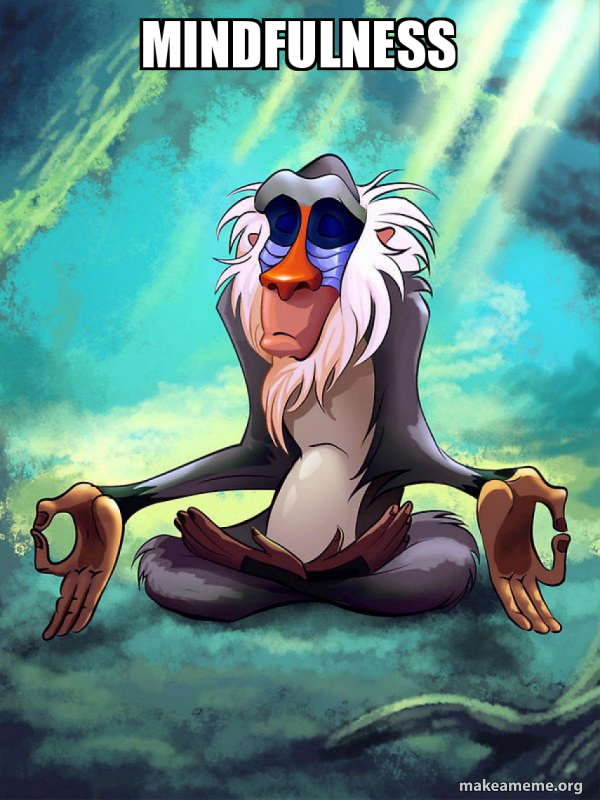 Mindfulness - Rafiki Meditating - Lion King | Make a Meme