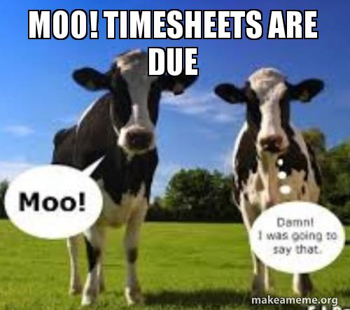 Moo! Timesheets Are Due