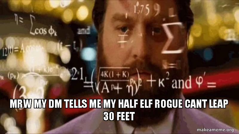 Mrw My Dm Tells Me My Half Elf Rogue Cant Leap 30 Feet Make A Meme