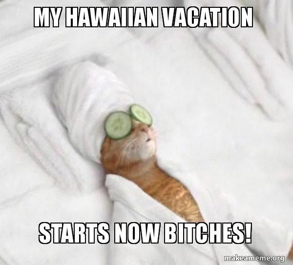 My Hawaiian Vacation Starts Now Bitches
