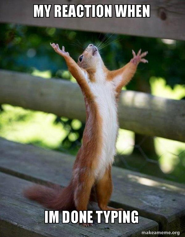my reaction when im done typing happy squirrel make a meme