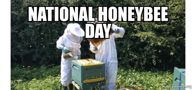 NATIONAL Honeybee Day | Make a Meme