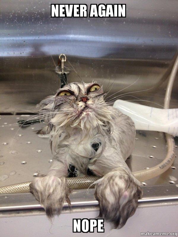 Never Again Nope Cat Bath Returns Make A Meme