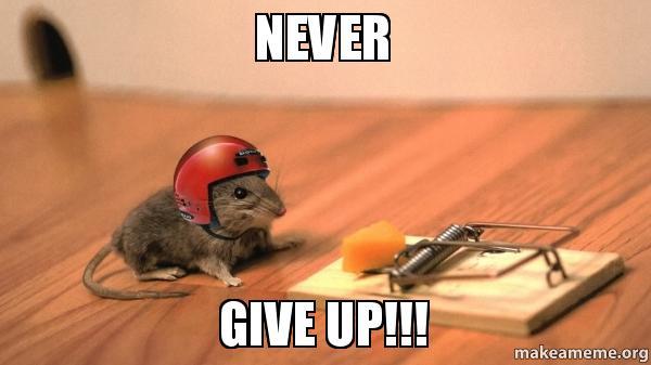 never give up p5niz5 never give up!!! make a meme