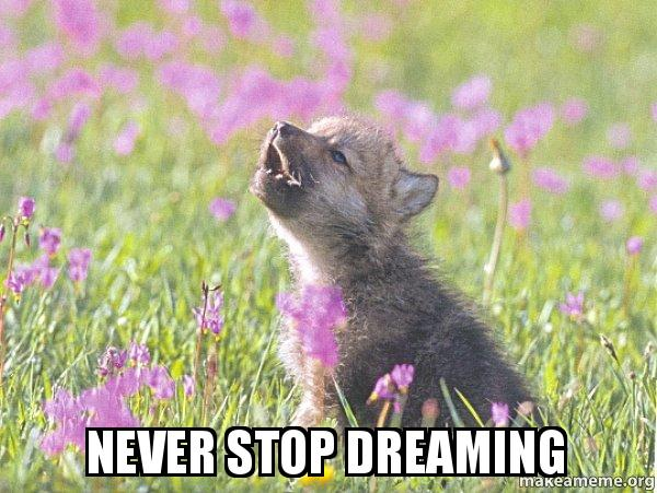 Never Stop Dreaming Baby Insanity Wolf Make A Meme
