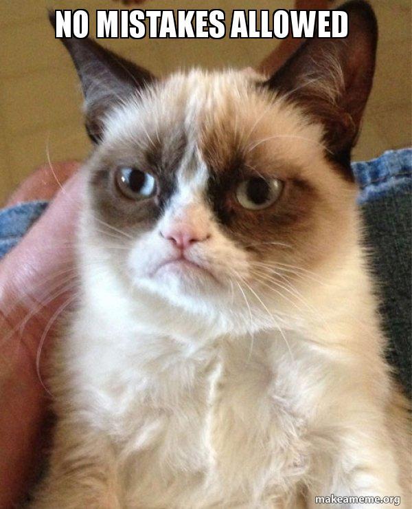 no mistakes allowed - Grumpy Cat | Make a Meme