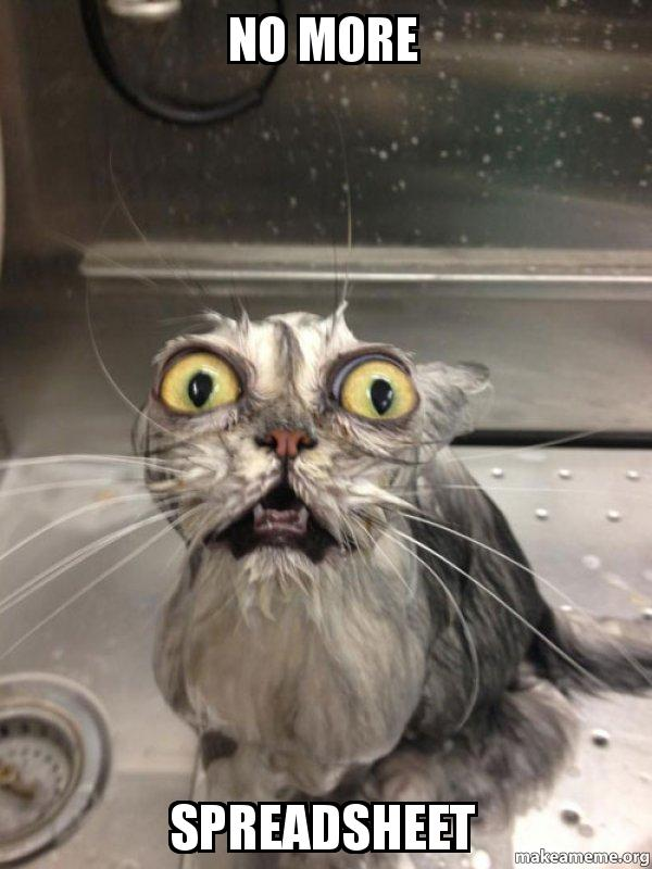 NO MORE SPREADSHEET - Cat bath | Make a Meme