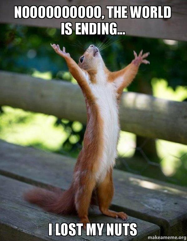 noooooooooo the world noooooooooo, the world is ending i lost my nuts make a meme