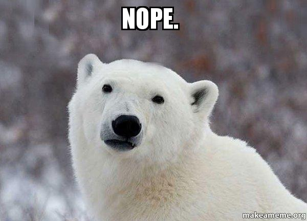 Image result for polar bear nope
