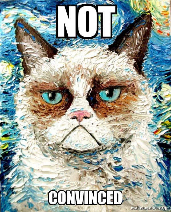 not convinced - Vincent Van No - Grumpy Cat | Make a Meme