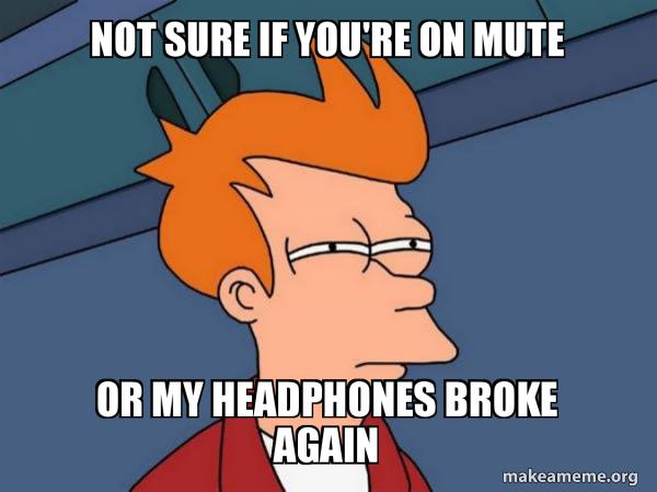 Not sure if you're on mute or my headphones broke again - Futurama Fry |  Make a Meme
