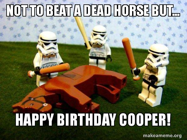 Not To Beat A Dead Horse But Happy Birthday Cooper Flogging A