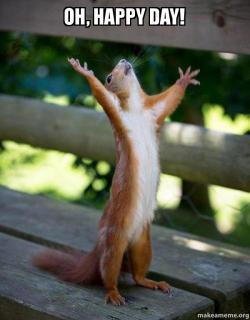 oh happy day mxrl75 oh, happy day! happy squirrel make a meme