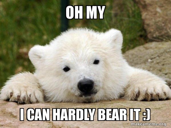 Popular Opinion Bear meme