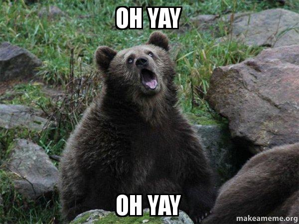 Oh Yay Oh Yay Sarcastic Bear Make A Meme
