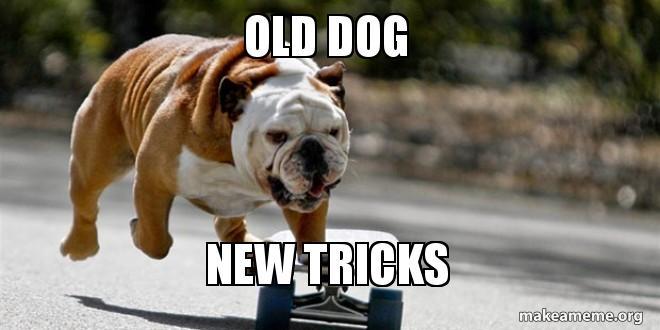 Image result for old dog new trick meme