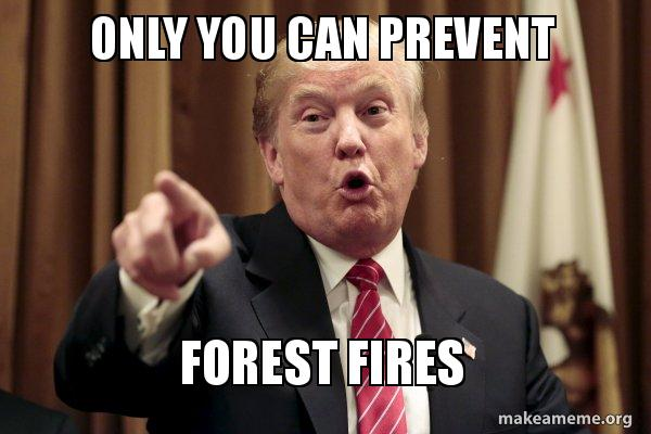 only you can prevent forest fires donald trump says make a meme