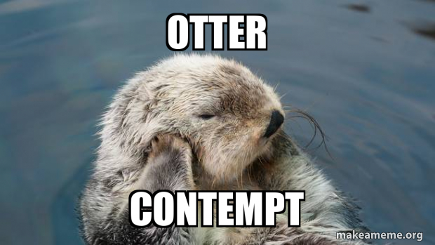 Otter Contempt | Make a Meme