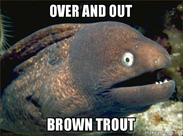 Bad Joke Eel meme