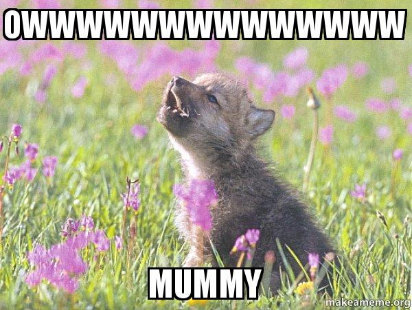 baby insanity wolf meme - photo #20