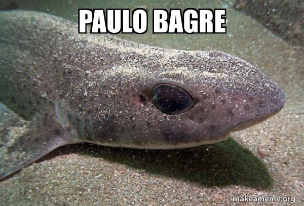 Dirty Joke Dogfish meme
