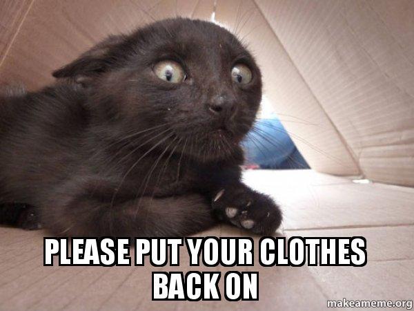 Put Your Clothes Away Meme ~ Please put your clothes back on schitzo cat make a meme