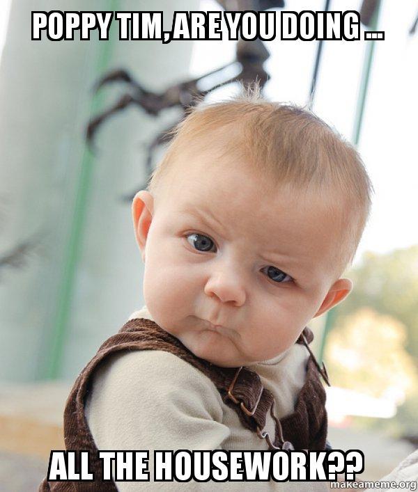 poppy tim are poppy tim, are you doing all the housework?? skeptical baby,Poppy Meme