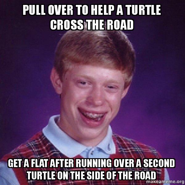 Bad Luck Brian meme