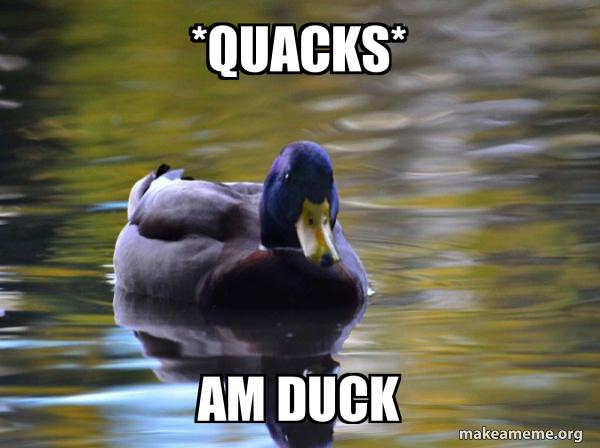 Zen Advice Mallard meme