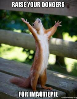 Raise Your Dongers For Imaqtiepie Happy Squirrel Make A Meme