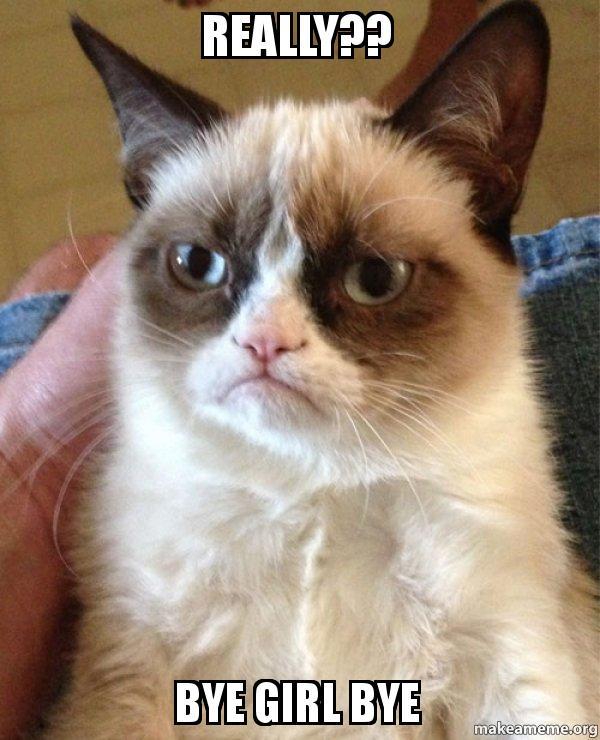 really bye girl really?? bye girl bye grumpy cat make a meme