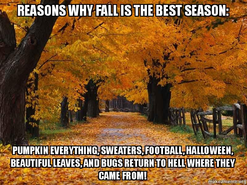 why is autumn the best season 14 reasons why summer is the best season ever in lifestyle getting a proper scottish summer is about as rare as jumping right out of bed on a monday.
